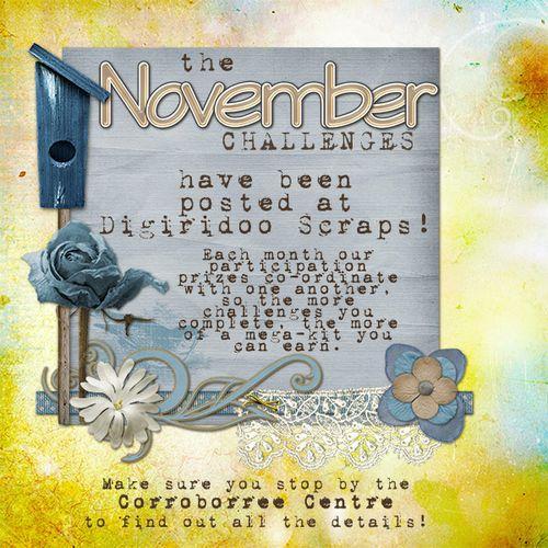 DSA_Nov2010Chall_w